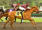 "Evita Argentina takes on older fillies and mares in the A Gleam.<br><a target=""blank"" href=""http://www.bloodhorse.com/horse-racing/photo-store?ref=http%3A%2F%2Fpictopia.com%2Fperl%2Fgal%3Fprovider_id%3D368%26ptp_photo_id%3D7762281%26ref%3Dstory"">Order This Photo</a>"