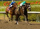 Zenyatta drew post 1 for the Ladies Classic.