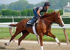 Shackleford working at Belmont June 1, 2011