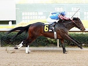 Officer Alex wins the 2013 Bachelor Stakes.
