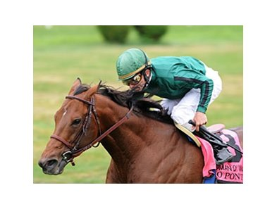 "Gio Ponti will contest one mile for the first time in his last 11 starts in the Shadwell Turf Mile.<br><a target=""blank"" href=""http://www.bloodhorse.com/horse-racing/photo-store?ref=http%3A%2F%2Fpictopia.com%2Fperl%2Fgal%3Fprovider_id%3D368%26ptp_photo_id%3D9102048%26ref%3Dstory"">Order This Photo</a>"