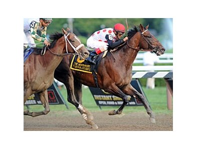 "To Honor and Serve won the Woodward Stakes at Saratoga Sept. 1.<br><a target=""blank"" href=""http://photos.bloodhorse.com/AtTheRaces-1/at-the-races-2012/22274956_jFd5jM#!i=2061024596&k=TZgQsTH"">Order This Photo</a>"