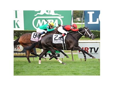 "King David takes on a big field in the Commonwealth Turf Stakes.<br><a target=""blank"" href=""http://photos.bloodhorse.com/AtTheRaces-1/at-the-races-2012/22274956_jFd5jM#!i=2134545948&k=jTpgRPJ"">Order This Photo</a>"