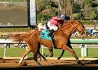 Sam's Sister won the La Brea Stakes on December 26.