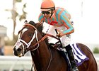 Conquest Typhoon won the Cecil B. DeMille Stakes on the grass at Del Mar on Nov. 29.