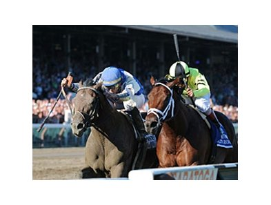"Blame (left) catches Quality Road late to win the Whitney.<br><a target=""blank"" href=""http://www.bloodhorse.com/horse-racing/photo-store?ref=http%3A%2F%2Fpictopia.com%2Fperl%2Fgal%3Fprovider_id%3D368%26ptp_photo_id%3D9133137%26ref%3Dstory"">Order This Photo</a>"