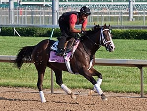 Broadway's Alibi - Churchill Downs May 2, 2012..