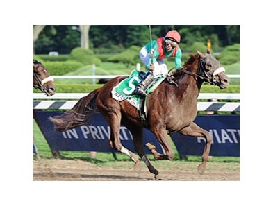 "King's Bishop winner Visionaire will not be pointed to the Breeders' Cup.<br><a target=""blank"" href=""http://www.bloodhorse.com/horse-racing/photo-store?ref=http%3A%2F%2Fpictopia.com%2Fperl%2Fgal%3Fprovider_id%3D368%26ptp_photo_id%3D5634089%26ref%3Dstory"">Order This Photo</a>"