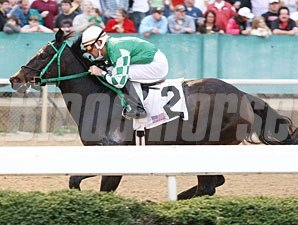 All About Allie wins 2011 The Rainbow Miss Stakes.