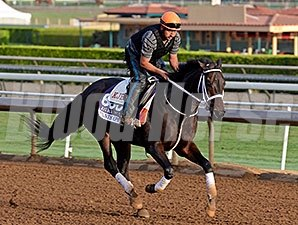 Pants On Fire works at Santa Anita for the Breeders' Cup Oct. 26, 2014.