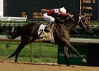 "Pyro won the Northern Dancer this summer at Churchill Downs. <br><a target=""blank"" href=""http://www.bloodhorse.com/horse-racing/photo-store?ref=http%3A%2F%2Fpictopia.com%2Fperl%2Fgal%3Fprovider_id%3D368%26ptp_photo_id%3D4832193%0D%0A%26ref%3Dstory"">Order This Photo</a>"