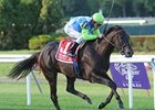 "Check the Label defeated Snow Top Mountain last September in the Garden City.<br><a target=""blank"" href=""http://www.bloodhorse.com/horse-racing/photo-store?ref=http%3A%2F%2Fpictopia.com%2Fperl%2Fgal%3Fprovider_id%3D368%26ptp_photo_id%3D9193324%26ref%3Dstory"">Order This Photo</a>"