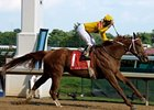 "2007 Horse of the Year Curlin should now be able to run anywhere.<br><a target=""blank"" href=""http://www.bloodhorse.com/horse-racing/photo-store?ref=http%3A%2F%2Fpictopia.com%2Fperl%2Fgal%3Fprovider_id%3D368%26ptp_photo_id%3D4832693%26ref%3Dstory"">Order This Photo</a>"