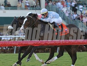 Courageous Cat wins the 2010 Canadian Turf.