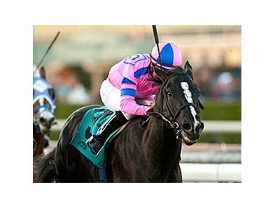 Bettys Bambino comes running late to win the Daytona at Santa Anita Park.