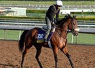 "Valiant Emilia <br><a target=""blank"" href=""http://photos.bloodhorse.com/BreedersCup/2014-Breeders-Cup/Works/i-NBNWj3f"">Order This Photo</a>"