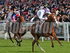 Dawn Approach wins at Royal Ascot