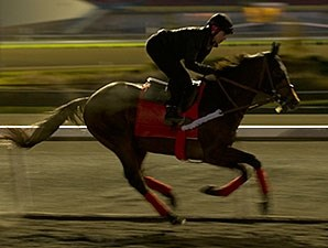 Stormy Len works at Woodbine on 10/25/2013