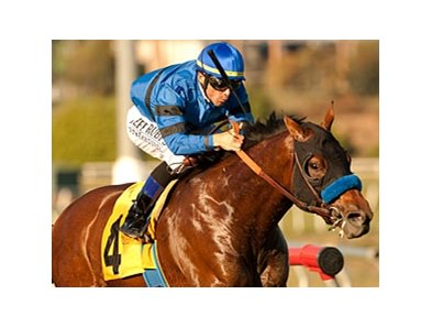 Den's Legacy takes on 7 in the Affirmed Handicap at Betfair Hollywood Park.