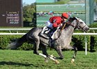 "Turallure flies home to win the Bernard Baruch Handicap.<br><a target=""blank"" href=""http://www.bloodhorse.com/horse-racing/photo-store?ref=http%3A%2F%2Fpictopia.com%2Fperl%2Fgal%3Fprovider_id%3D368%26ptp_photo_id%3D9647783%26ref%3Dstory"">Order This Photo</a>"