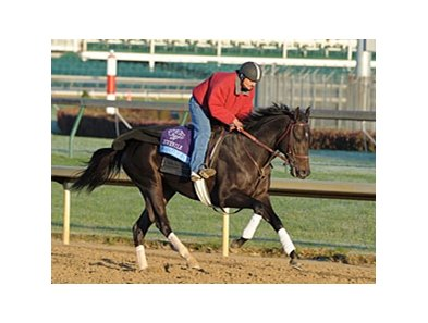 "Take Charge Indy<br><a target=""blank"" href=""http://www.bloodhorse.com/horse-racing/photo-store?ref=http%3A%2F%2Fpictopia.com%2Fperl%2Fgal%3Fprovider_id%3D368%26ptp_photo_id%3D9726180%26ref%3Dstory"">Order This Photo</a>"