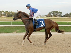 Battle Hardened wins the 2012 Sam F. Davis.