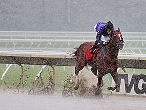 Rainbow Heir wins the 2014 New Jersey Breeders Handicap.
