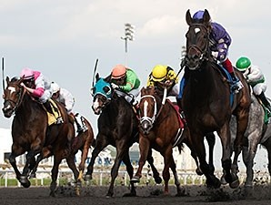 Phil's Dream wins the 2014 New Providence Stakes.