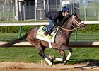 Oxbow with Gary Stevens works at Churchill Downs.