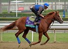 "Super Ninety Nine<br><a target=""blank"" href=""http://photos.bloodhorse.com/BreedersCup/2012-Breeders-Cup/Works/26130247_gxH6nS#!i=2189106521&k=292nk2d"">Order This Photo</a>"