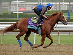 Super Ninety Nine - Breeders' Cup 2012