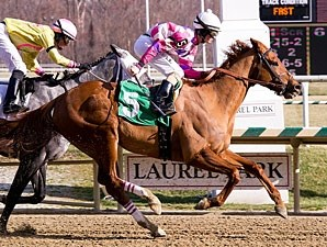 Eighttofasttocatch wins the 2011 Harrison Johnson Memorial Stakes.