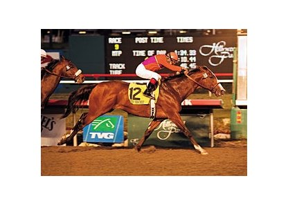 Into Mischief won the Cash Call Futurity (gr. I) at Hollywood Park.
