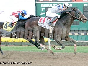Neck 'n Neck wins the 2012 Indiana Derby.