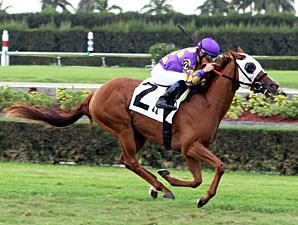 Awesome Belle wins the 2012 Crystal Rail.