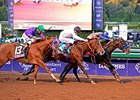 Bayern (inside) and California Chrome (left) in the 2014 Breeders' Cup Classic.