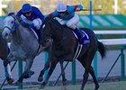 "Robe Tissage (right)<br><a target=""blank"" href=""http://photos.bloodhorse.com/AtTheRaces-1/at-the-races-2012/22274956_jFd5jM#!i=2263364714&k=ds7THCm"">Order This Photo</a>"
