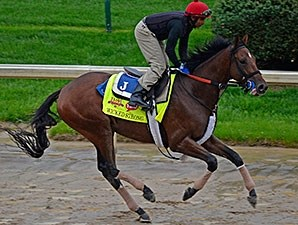 Wicked Strong - Churchill Downs, April 28, 2014