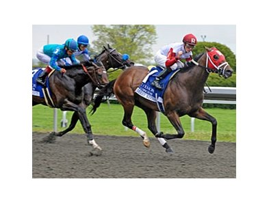 "Blush is the dam of Derby Kitten, shown winning the 2011 Coolmore Lexington (gr. III).<br><a target=""blank"" href=""http://www.bloodhorse.com/horse-racing/photo-store?ref=http%3A%2F%2Fpictopia.com%2Fperl%2Fgal%3Fprovider_id%3D368%26ptp_photo_id%3D9500908%26ref%3Dstory"">Order This Photo</a>"