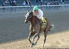 Salutos Amigos Aims to Extend Win Streak