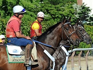 Atigun and Unstoppable U - Belmont Park, June 1, 2012.