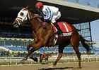 Officer Cherrie won the Mazzarine BC (gr. III-C) last Sept. 29 at Woodbine