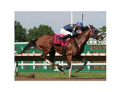 Brushed by a Star wins Molly Pitcher Stakes.