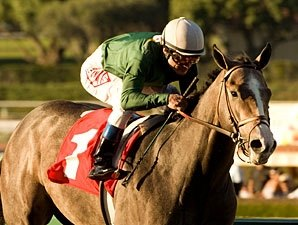 The Pamplemousse Sharp at Santa Anita