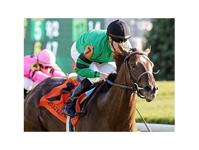 Rogue Romance, winning the 2010 Bourbon Stakes.