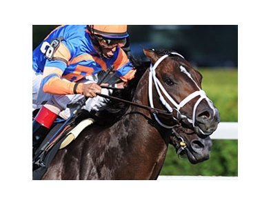 "Overdriven<br><a target=""blank"" href=""http://www.bloodhorse.com/horse-racing/photo-store?ref=http%3A%2F%2Fpictopia.com%2Fperl%2Fgal%3Fprovider_id%3D368%26ptp_photo_id%3D9609851%26ref%3Dstory"">Order This Photo</a>"
