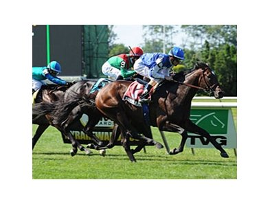 "Summer Front makes his second start of 2013 in the Miami Mile Handicap.<br><a target=""blank"" href=""http://photos.bloodhorse.com/AtTheRaces-1/at-the-races-2012/22274956_jFd5jM#!i=1909445374&k=tvKC9Sc"">Order This Photo</a>"
