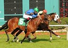 Past Winners Part of Packed Tampa Bay Stakes