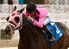 Comma to the Top won the 2012 Daytona Stakes.