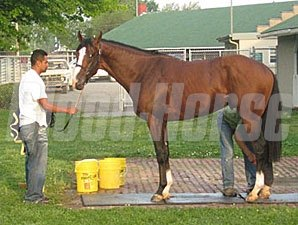 Union Rags at Churchill Downs 4/30/2012